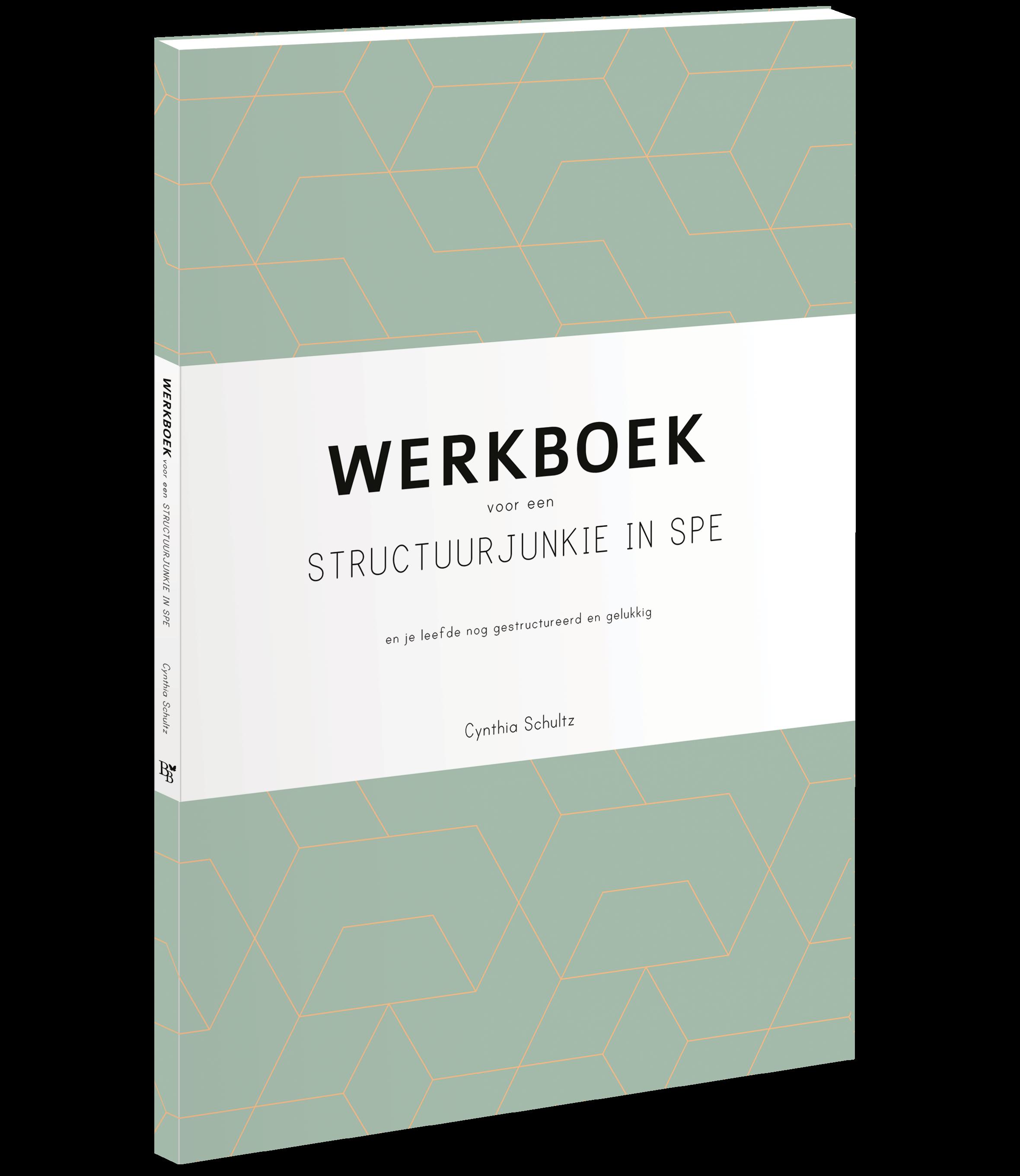 3d-Werkboek_structuurjunkie